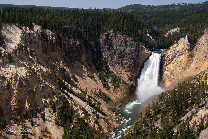grand canyon of the yellowstone. A day trip to yellowstone national park