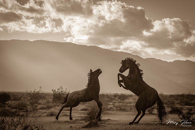 Borrego Springs Sculptures in the Desert, horses