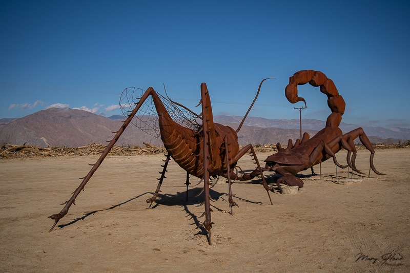 Borrego Springs Sculptures in the Desert, scorpion and cricket
