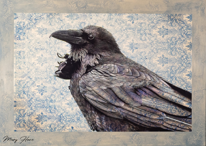 mixed media art, raven
