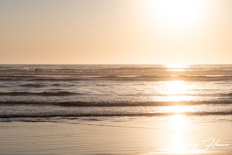 Newport, Oregon surfer