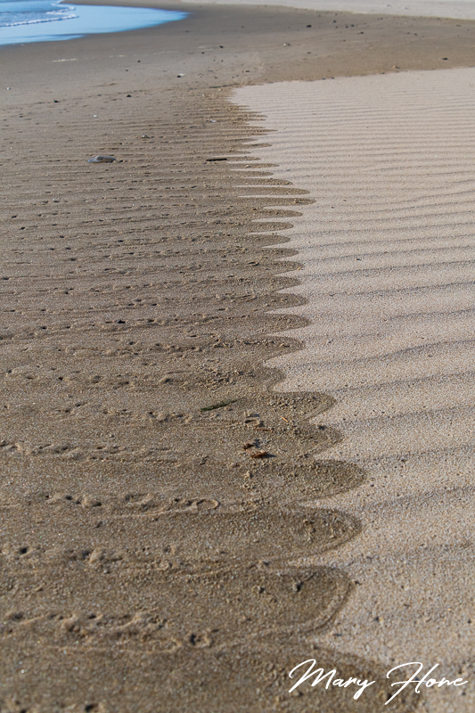 patterns in the sand